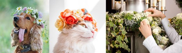 ペットの花祭壇